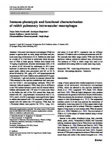 Immuno-phenotypic and functional characterization of ... - Springer Link