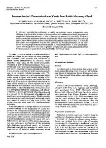 Immunochemical Characterization of Casein from ... - Europe PMC