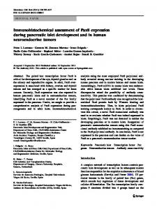 Immunohistochemical assessment of Pax8 expression ... - Springer Link