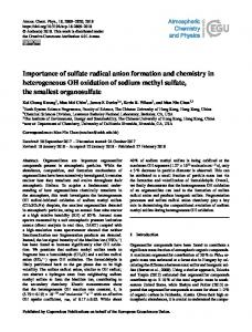 Importance of sulfate radical anion formation and