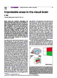 Improbable areas in the visual brain - UCL