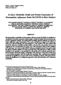 In Silico Metabolic Model and Protein Expression of ... - Deep Blue