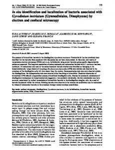In situ identification and localization of bacteria associated with ...