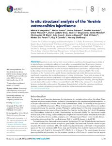 In situ structural analysis of the Yersinia enterocolitica ... - BioMedSearch