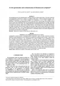 In vitro germination and acclimatization of