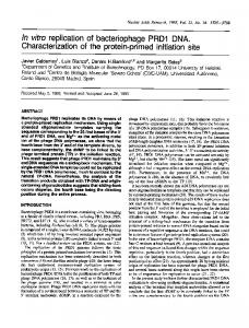 In vitro replication of bacteriophage PRD1 DNA. - Europe PMC