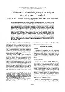 In Vivo and In Vitro Collogenolytic Activity of ...