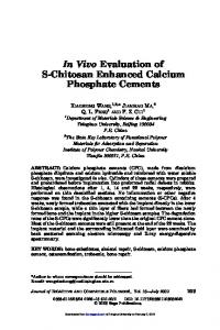 In Vivo Evaluation of S-Chitosan Enhanced Calcium Phosphate
