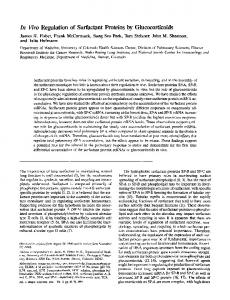 In Vivo Regulation of Surfactant Proteins by ... - ATS Journals