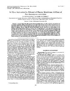 In VivoActivation by Ethanol of Plasma Membrane ATPase of ...