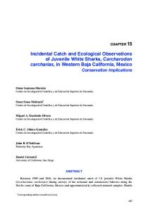 Incidental Catch and Ecological Observations of ...