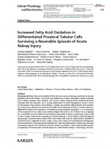 Increased Fatty Acid Oxidation in Differentiated ...