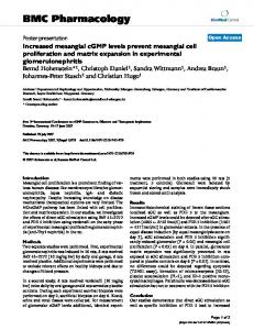 Increased mesangial cGMP levels prevent mesangial cell proliferation ...
