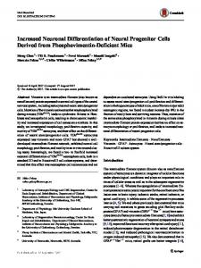 Increased Neuronal Differentiation of Neural ...