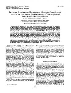 Increased spontaneous mutation and alkylation sensitivity of ...