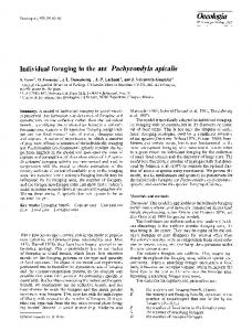 Individual foraging in the ant - Springer Link