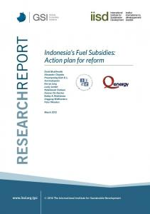 Indonesia's Fuel Subsidies: Action plan for reform - International ...