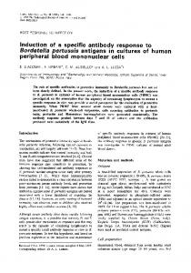 Induction of a specific antibody response to Bordetella pertussis