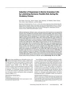 Induction of Heparanase in Bovine Granulosa Cells by Luteinizing ...