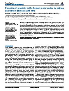 Induction of plasticity in the human motor cortex by ...