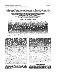 Induction of Potent Immune Responses by ... - Journal of Virology