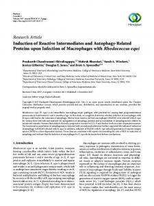 Induction of Reactive Intermediates and Autophagy-Related Proteins ...