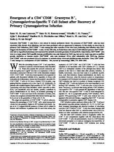 Infection Recovery of Primary Cytomegalovirus Cytomegalovirus ...