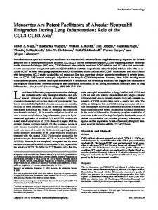 Inflammation: Role of the CCL2-CCR2 Axis Neutrophil Emigration ...