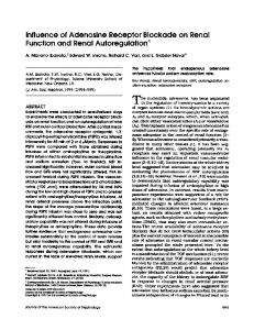 Influence of Adenosine Receptor Blockade on Renal Function and ...