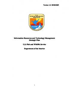 Information Resources and Technology Management Strategic Plan ...