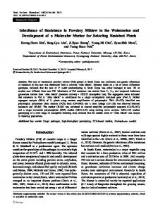 Inheritance of Resistance to Powdery Mildew in the ... - Springer Link