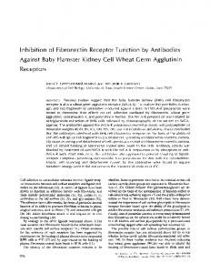 Inhibition of Against Baby Receptors Fibronectin Receptor Hamster ...