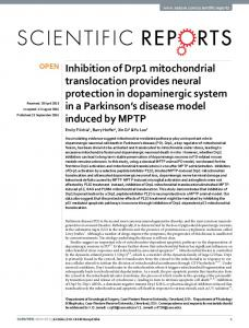 Inhibition of Drp1 mitochondrial translocation provides neural ...