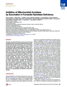 Inhibition of Mitochondrial Aconitase by Succination in ... - Cell Press
