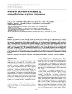 Inhibition of protein synthesis by aminoglycoside-arginine conjugates.