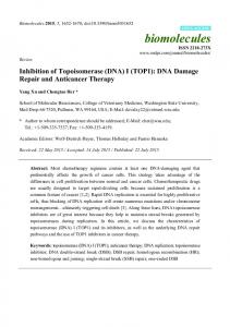Inhibition of Topoisomerase (DNA) I (TOP1): DNA Damage Repair and ...