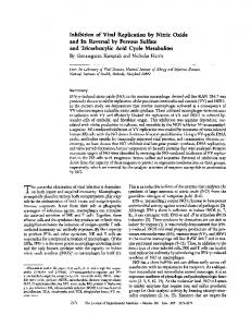 Inhibition of Viral Replication by Nitric Oxide and Its ... - BioMedSearch