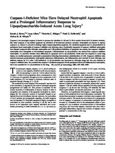 Injury Lipopolysaccharide-Induced Acute Lung Inflammatory ...