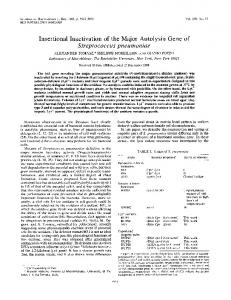 Insertional Inactivation of the Major Autolysin Gene of - Journal of ...