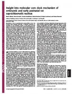 Insight into molecular core clock mechanism of embryonic and early ...