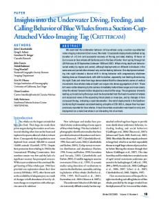 Insights into the Underwater Diving, Feeding, and Calling Behavior of ...