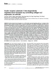 Insulin receptor substrate-1 time-dependently ...