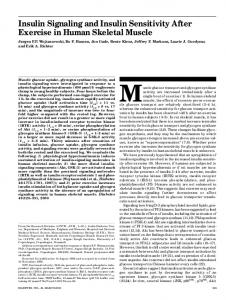 Insulin Signaling and Insulin Sensitivity After Exercise in ... - Diabetes