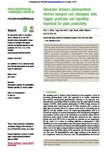 Interaction between photosynthetic electron transport and chloroplast ...