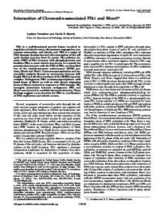 Interaction of Chromatin-associated Plk1 and Mcm7 - The Journal of ...