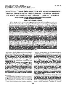 Interaction of Classical Swine Fever Virus with ... - Journal of Virology