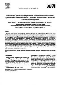 Interaction of positively charged amino acid residues of ... - Core
