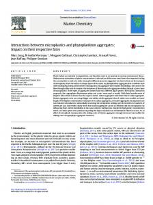 Interactions between microplastics and phytoplankton