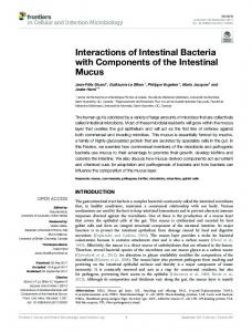 Interactions of Intestinal Bacteria with Components