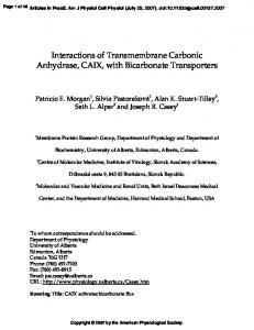 Interactions of Transmembrane Carbonic Anhydrase, CAIX, with ...